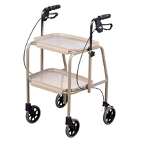 Walking Aid Trolley