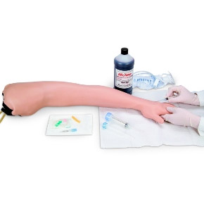 Adult Venipuncture & Injection Training Arm | LF00698U