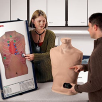 Complete Auscultation Training Station | LF01191U