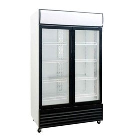 Double Glass Door Fridge | DFS1000