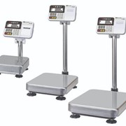 HV-C/CP and HW-C/CP Series Platform Scales