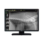 Veterinary X-Ray Systems | FPW Wireless DR System