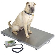 Veterinary Platform Scale
