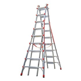 Telescopic Access Ladder Model 17 | Skyscraper