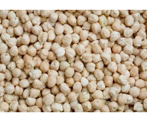 """Chickpea is a salt-sensitive crop species, so improvement in its salt tolerance is a priority."""