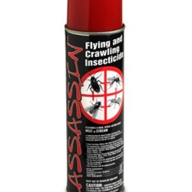 Flying & Crawling Insecticide | Assassin