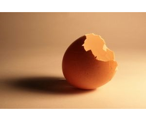 Are we at risk of having all our eggs in the Asian economic basket?