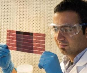Anirudh Sharma with an experimental plastic solar cell.