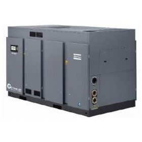 ZH+ Oil Free Air Compressor