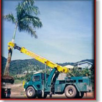 Rough Terrain Crane Hire | 20t