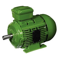 WEG Electric Motor | IEC General Purpose