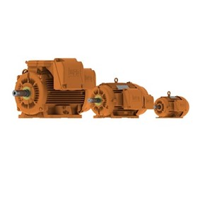 Electric Motor | IEC Mining Motors