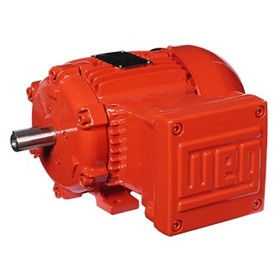 Electric Motor | IEC Hazardous Area Application