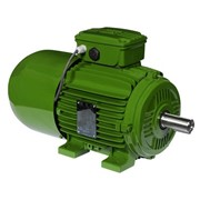WEG Electric Motor | IEC Brake