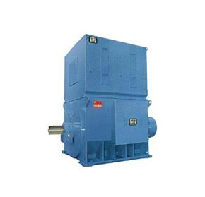 WEG Electric Motor | Low and High Voltage Machine