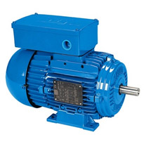 Electric Motor | Single-Phase - IEC General Purpose