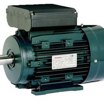 Single Phase Induction Motor | Monarch | TECO