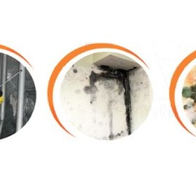 Mould Remediation | Property & Contents