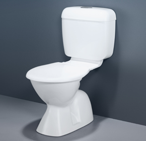 Toilets, Urinals & Bidets | Caroma Concorde Insignia Connector Toilet