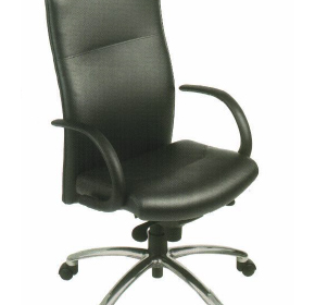 Ergonomic Office Chair | Metz