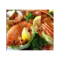 Contract Catering | Platters