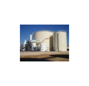 Organic wastes to produce biogas for green power generation