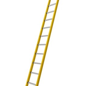 Branach Single Ladders | TradeMaster (FNR)