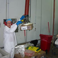 Vacuum Lifter | Frozen Meat