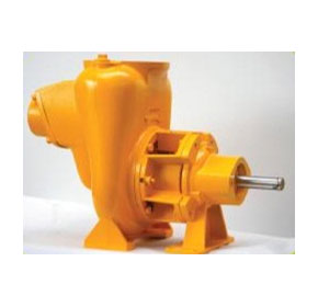 Pedestal Water Pumps | WET 1 2000 - P