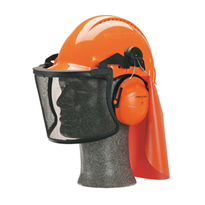Head & Face Protection | 3M™