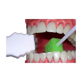 Disposable Mouth Prop | Open Wide®