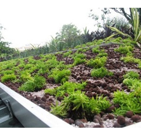 Green Roof Systems | Elmich Australia