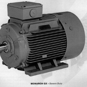 Electric Motors | Monarch