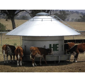 Sheep & Cattle Feeders | HE Silos