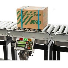 Basic Carton Checkweighing System EZI-Check