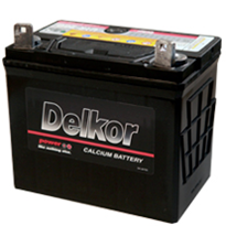 Calcium Batteries | Delkor