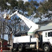 19 Metre Boom Type Cherry Picker for Hire | Redmond Gary