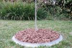 Galvanized Steel Tree Rings | Mulch and Mow | R.J. Cox Engineering