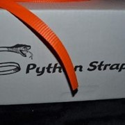 19mm Orange Woven Polyester Strap | Python Strap