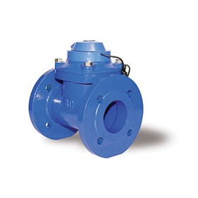 Flanged Water Meter | OMEGA