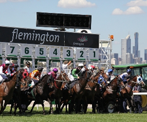 IBISWorld expects that higher attendance at the track, alongside the continuing popularity of Melbourne Cup events around the country, will drive a 3.3 per cent increase in food and beverage spending this year to $167.9 million.