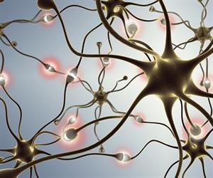 PhD students from ANU have come up with a way to regenerate neurons, paving the way towards a potential cure for Parkinson's disease.
