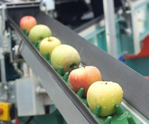 Using imaging technology to develop quality control systems for unprocessed and processed food items is a rapidly growing and expanding research area.
