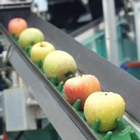 Food processing one of Australia's future growth hotspots