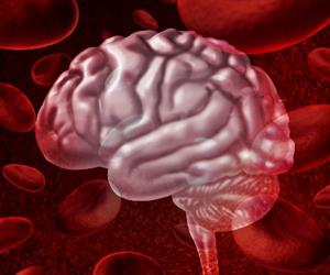 New research confirms that DNA modifications measured in blood signal changes in the brain.