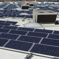 Government 'stifling' solar investment, solar jobs: union