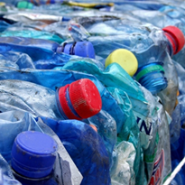 Alliance calls for release of COAG container deposit scheme report
