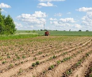 Fertiliser represented 19 per cent of total production costs in 2012-13.