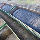 Newly approved coal rail line set to boost Qld's coal exports
