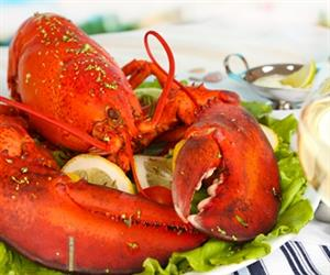 Australia's strong seafood sector includes Australian rock lobster, southern bluefin tuna and Tasmanian salmon.